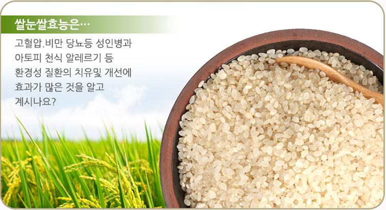쌀눈쌀 효능